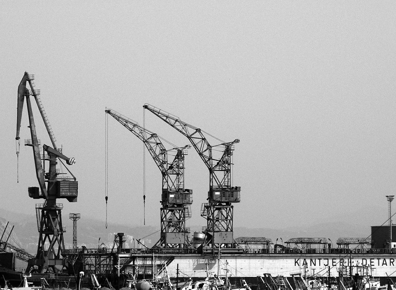 cranes-498756_1280